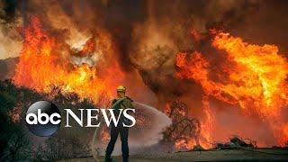 Portland protests, Djokovic's exit, wildfires; World in Photos, Sept. 7, 2020