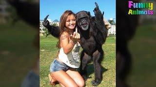 Funny Monkeys Doing Stupid Things - Funniest Animals Videos 2018