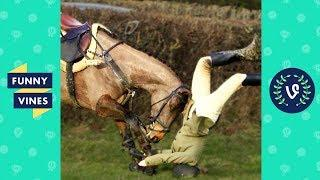 Funny Vine Animal Fails Compilation 2017 - Funniest Equestrian Horse Fails and Falls